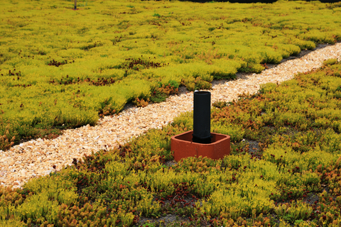 Green Roof Installation - R. Baker & Son Environmental Services